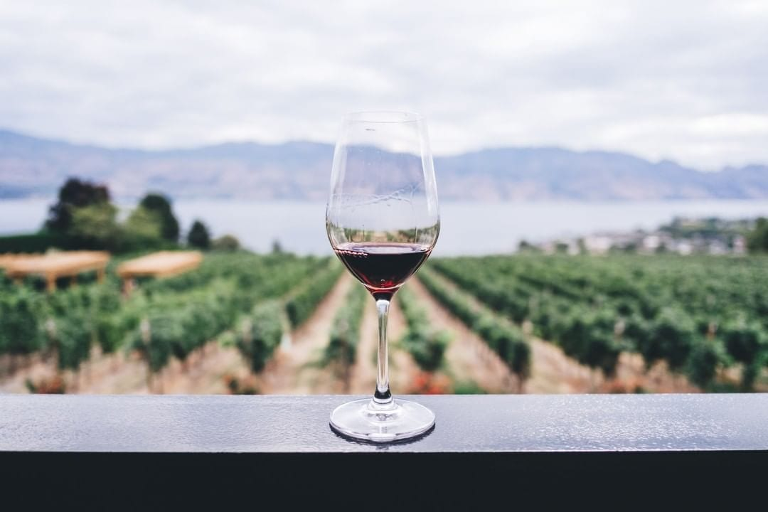 Indulge yourself in a tasting experience that goes beyond the norm in the wineries of Napa Valley – one of the world's top wine regions and famous for its prized Cabernet Sauvignon. Book your stay at @HotelZephyrSF and tour with @towertour today! https://bit.ly/34xS0fd